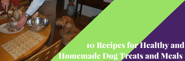 10 Healthy Homemade Dog Food Recipes and Organic Treats