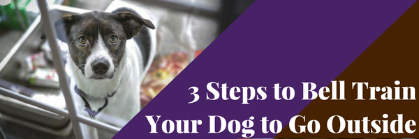 How To Train Your Dog To Go To The Bathroom 28 Images 3 Steps To Bell Train Your Dog To Go