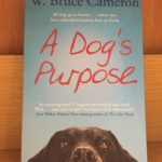 A Dog's Purpose: Why Animal Lovers Should Read This Book