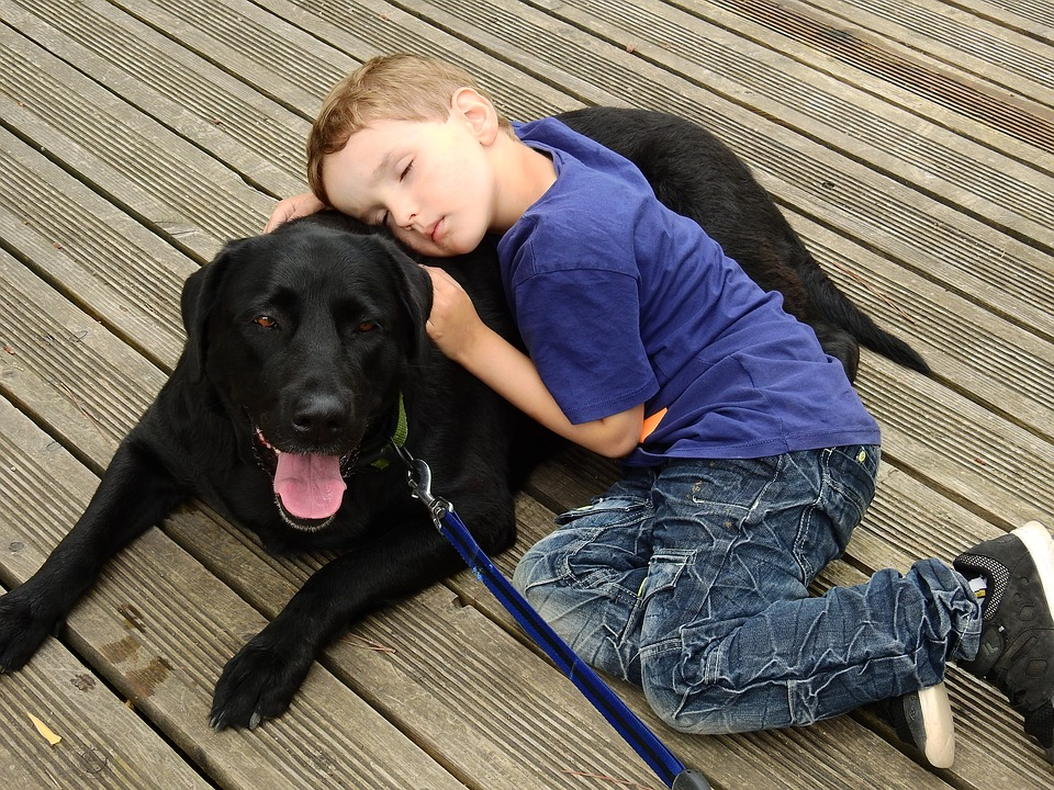 5 Ways to Bond With Your Dog