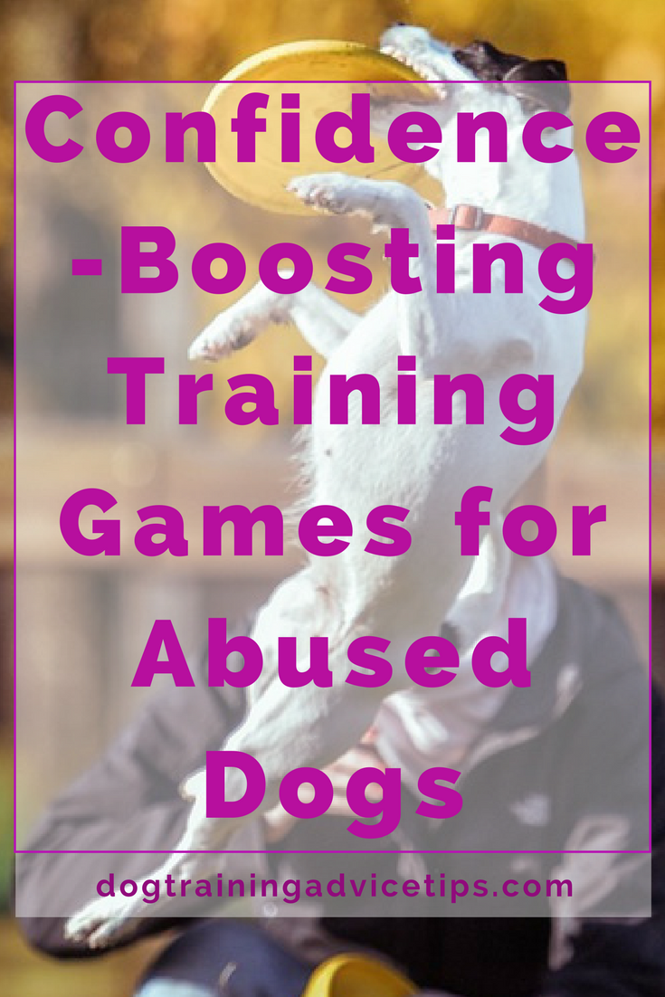 How to boost your dog confidence using games